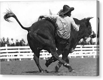 Cowboy Falling  From Bull Canvas Print by Underwood Archives