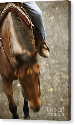 Cowboy Canvas Print by Margie Hurwich