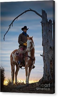 Cowboy Under Tree Canvas Print by Inge Johnsson