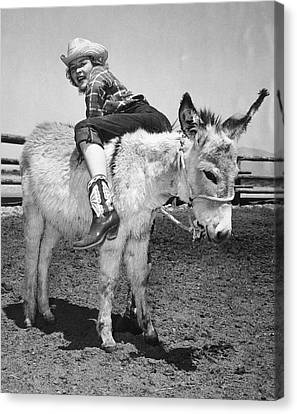 Cowgirl Backwards On A Donkey Canvas Print by Underwood Archives