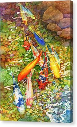 Coy Koi Canvas Print by Hailey E Herrera