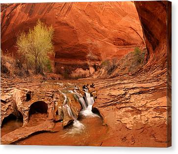 Coyote Gulch Texture Canvas Print by Leland D Howard