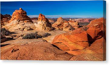 Coyote Lines Canvas Print by Chad Dutson