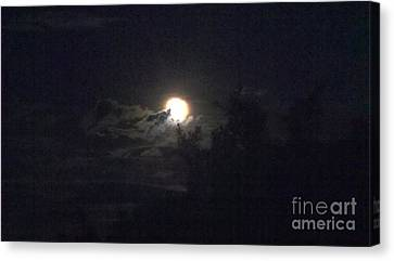 Coyote Moon Canvas Print by Polly Anna