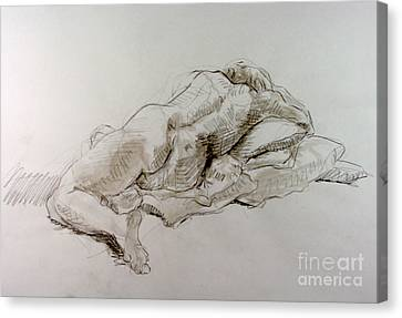 Craig Weeping Canvas Print by Andy Gordon