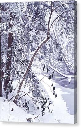 Cranberry River Deep Snow Canvas Print by Thomas R Fletcher