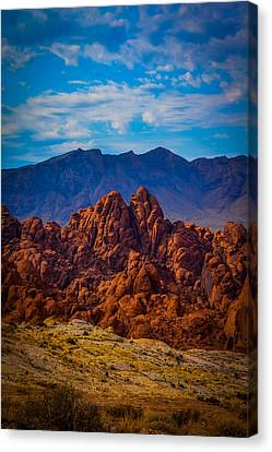 Creations Wonders Canvas Print by Steve Smith