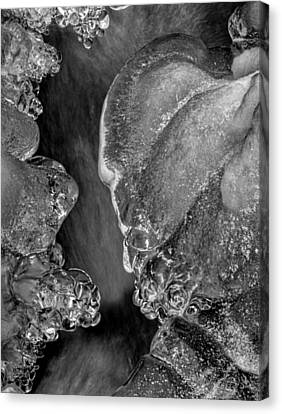Creek Ice In Black And White Canvas Print by Greg Mimbs