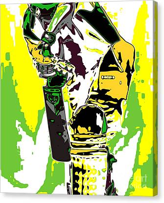 Cricketer Canvas Print by Chris Butler