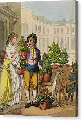 Cries Of London The Garden Pot Seller Canvas Print by Thomas Rowlandson