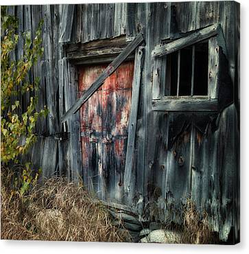 Crooked Barn - Rustic Barns Series  Canvas Print by Thomas Schoeller