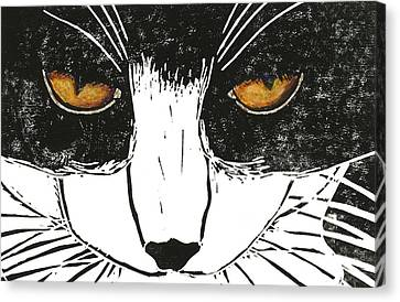Cross Kitty Canvas Print by Kerrie  Hubbard