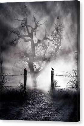 Crow Hallow Canvas Print by Peter Chilelli