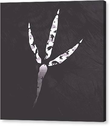 Crow's Foot Canvas Print by Daniel Hapi