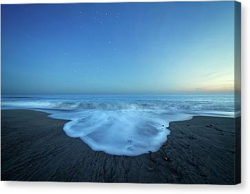 Crux Constellation Over Coastal Waters Canvas Print by Luis Argerich