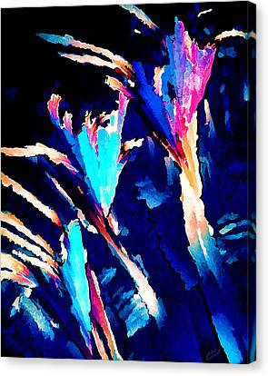 Crystal C Abstract Canvas Print by Bill Caldwell -        ABeautifulSky Photography