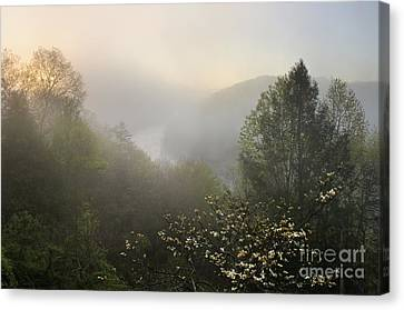 Cumberland River Dawn - D008596 Canvas Print by Daniel Dempster