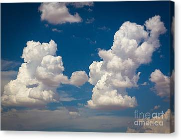 Cumulus Canvas Print by Inge Johnsson
