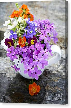 Cup Full Of Wildflowers Canvas Print by Edward Fielding