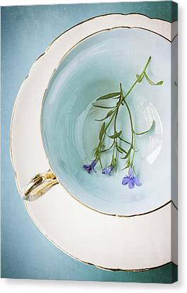 Cup Of Three Canvas Print by Amy Weiss