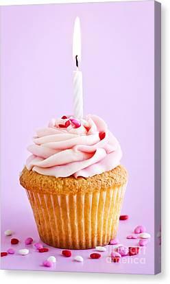 Cupcake Canvas Print by Elena Elisseeva