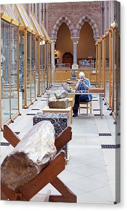 Curator In Mineral Gallery Canvas Print by Matt Stuart/oxford University Images