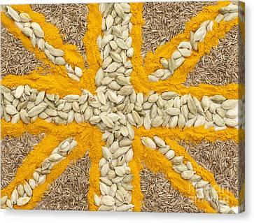 Curried Flag Canvas Print by Anne Gilbert