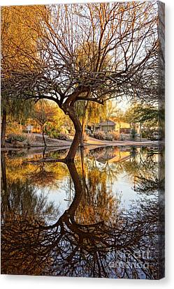 Curved Reflection Canvas Print by Kerri Mortenson