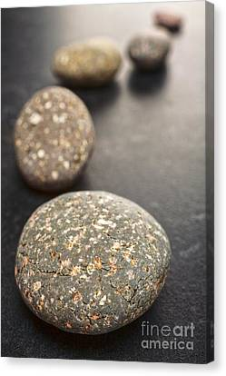 Curving Line Of Speckled Grey Pebbles On Dark Background Canvas Print by Colin and Linda McKie