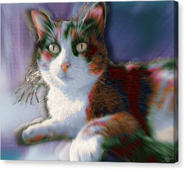 Custom Pet Portrait Cat 2 Canvas Print by Tony Rubino