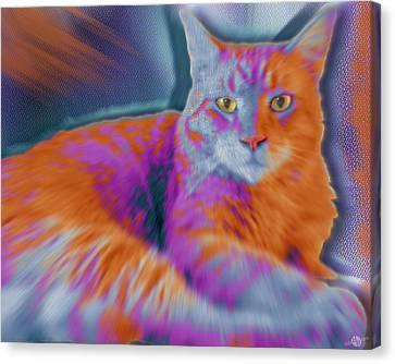 Custom Pet Portrait Cat 3 Canvas Print by Tony Rubino
