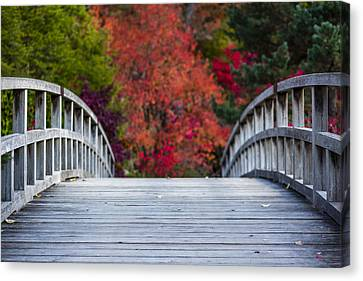 Cypress Bridge Canvas Print by Sebastian Musial