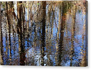 Cypress Reflection Nature Abstract Canvas Print by Carol Groenen