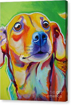 Chiweenie - Little Dog Canvas Print by Alicia VanNoy Call