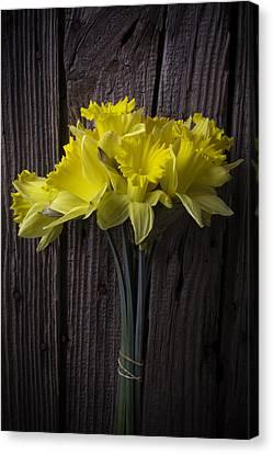Daffodil Bunch Canvas Print by Garry Gay