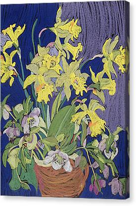 Daffodils With Jug Canvas Print by Frances Treanor