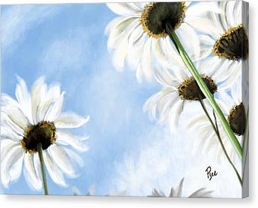 Daisies Canvas Print by Maria Schaefers