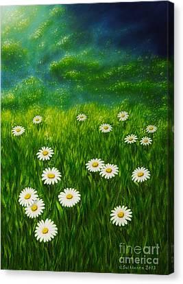 Daisy Meadow Canvas Print by Veikko Suikkanen