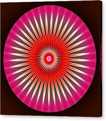 Daisy Canvas Print by Visual Artist  Frank Bonilla