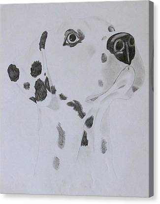 Dalmatian Canvas Print by AR Annahita