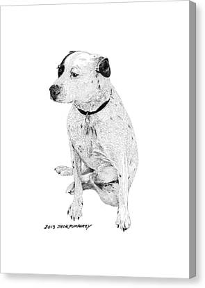 Dalmatian Mix Good Friend Canvas Print by Jack Pumphrey