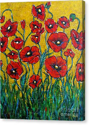 Dancing Poppies Canvas Print by Vickie Fears