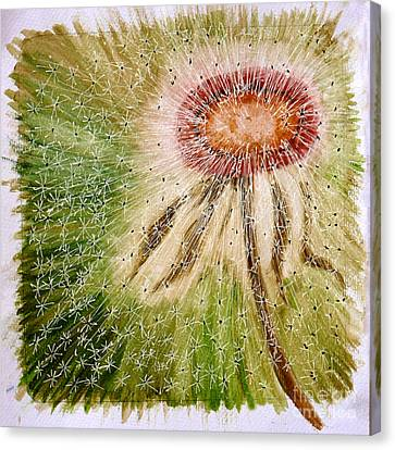 Dandelion Explosion Canvas Print by Madeline Moore