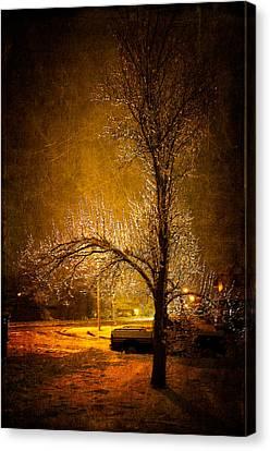 Dark Icy Night Canvas Print by Sofia Walker