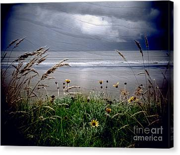 Dark Outlook Canvas Print by Karen Lewis