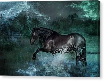 Dark Water Canvas Print by Pamela Hagedoorn