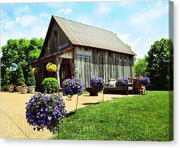 David Arms Gallery Canvas Print by Gary Prather