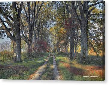 Daviess County Lane Canvas Print by Wendell Thompson