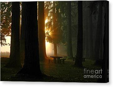 Dawn At Mckercher Park Canvas Print by Nick  Boren