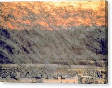 Dawn Liftoff Canvas Print by Steven Ralser
